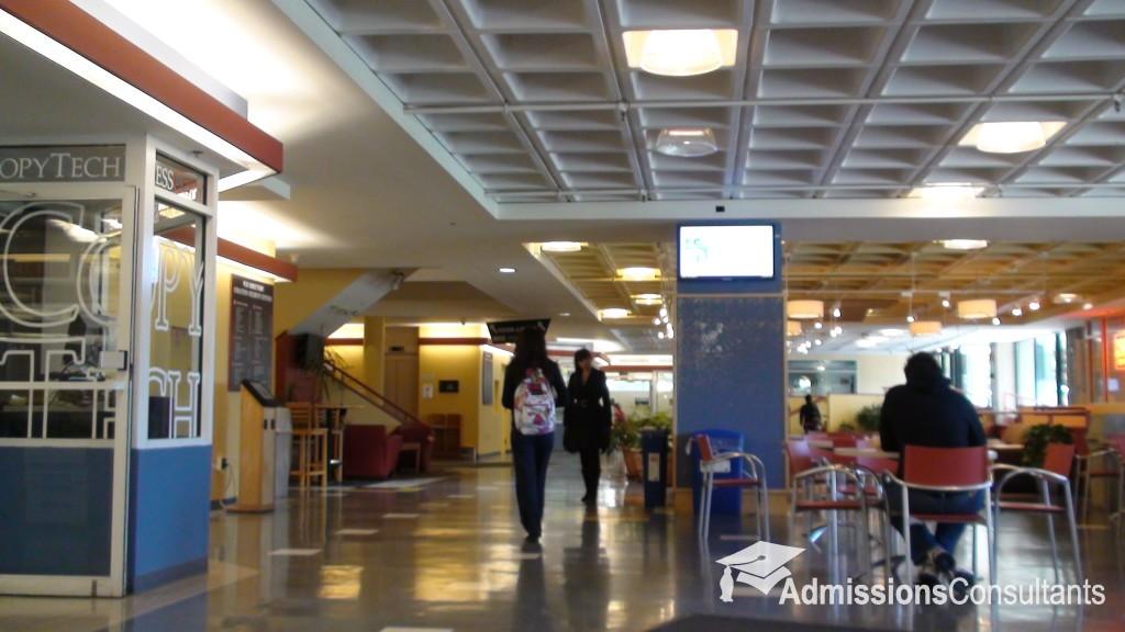 MIT students