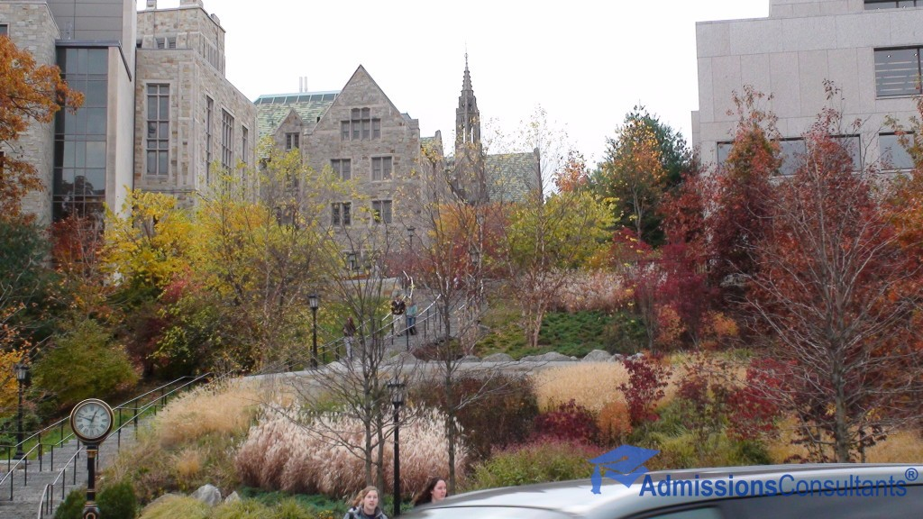bc fall admissions