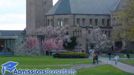 Cornell – Top Colleges and Universities